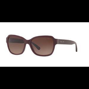 Coach 8232 Sunglasses